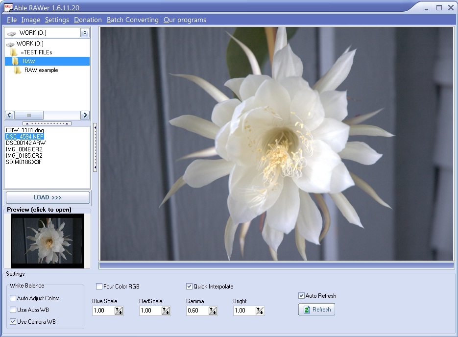 canon raw converter software download free