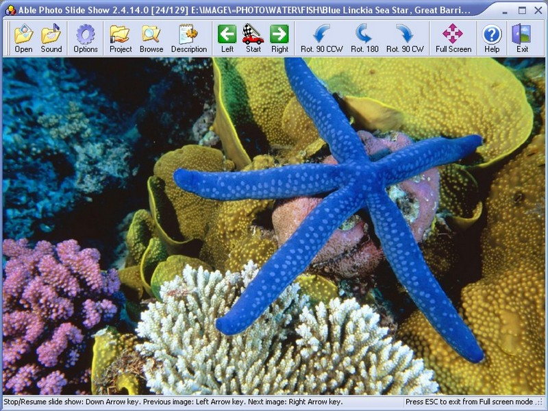Display all images as a slide show. Executable slideshow web gallery screensaver easy Screen Shot