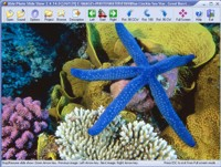 Easy Photo Slide Show Screen shot